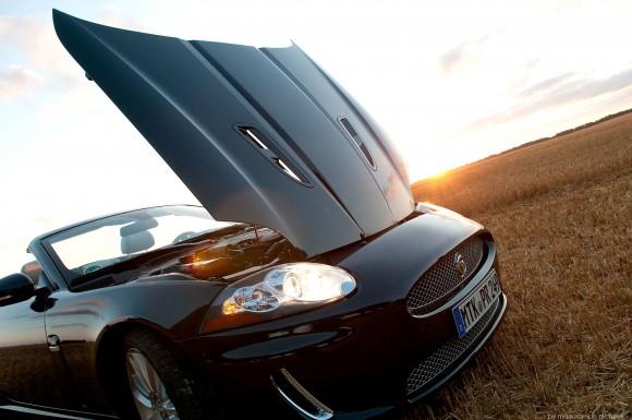 Jaguar-xkr-cvbl-260-Bearbei-580x385 in Böse Miezekatze - Jaguar XKR Convertible