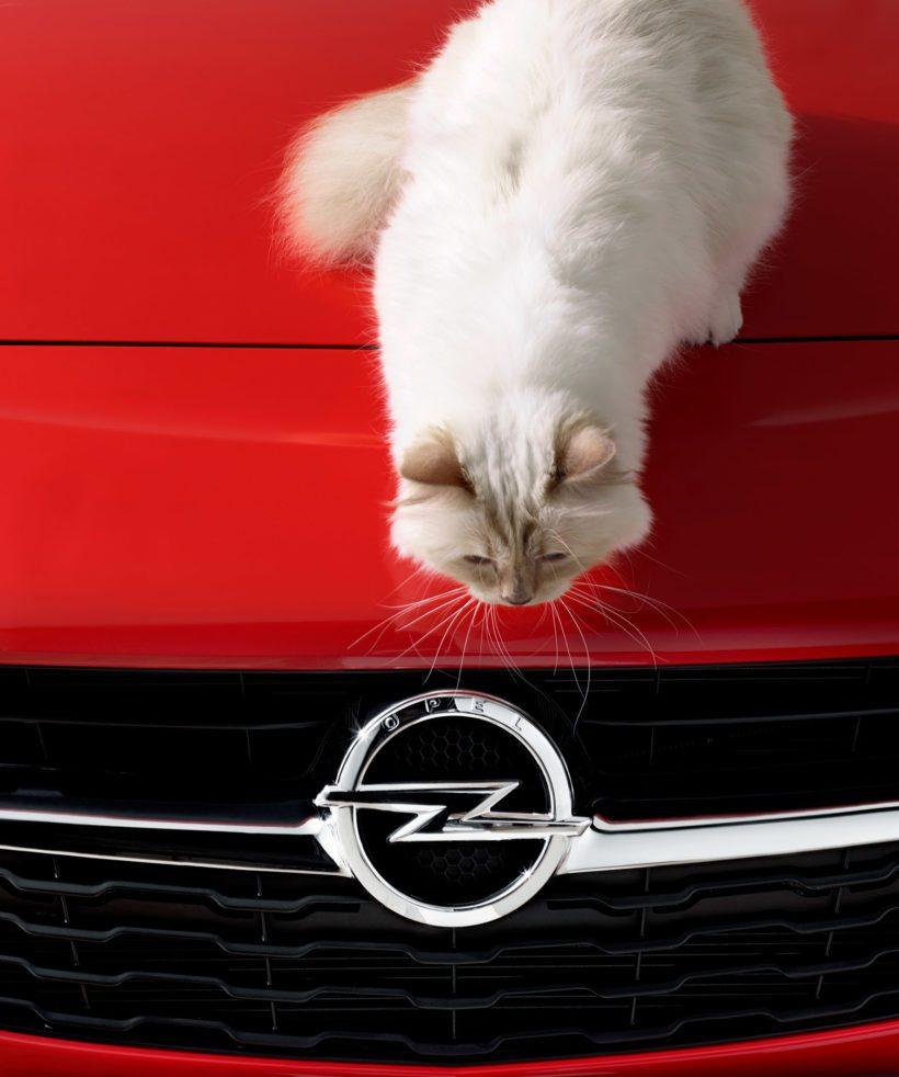 """Opel-Corsa-Lagerfeld-292914-820x982 in Alles für die Katz: Karl Lagerfeld eröffnet Opel-Ausstellung """"Corsa Karl und Choupette"""""""
