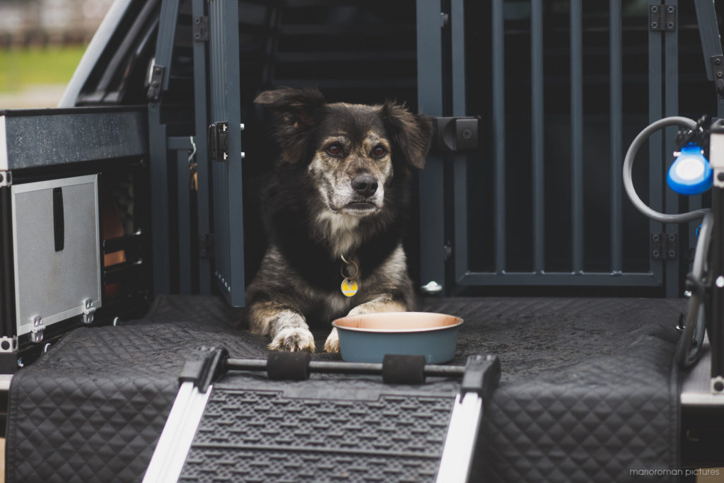 "2021 Mitsubishi L200 ""Hund"" | Fanaticar Magazin"